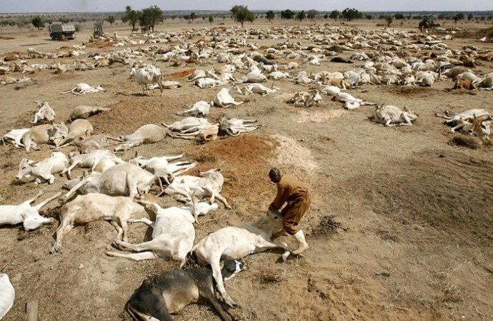 drought-east-africa-690x450
