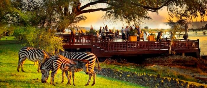 zambia-safari-ker-downey-wildlife