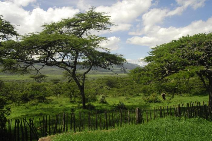 conservation-in-kenya.1200.jpg