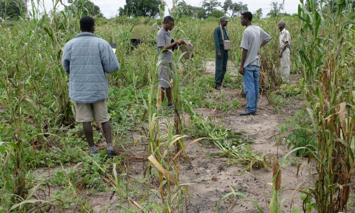 Namibia_7.26.2012_Threats_Section_Image_HI_115131.jpg