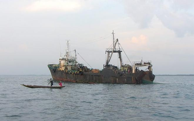Illegal Fishing Blogs Gambar Dan Yang Lainnya Di Wordpress